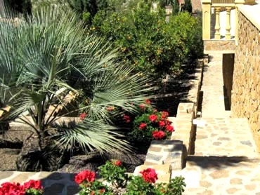 Welcome To Our Mediterranean Garden