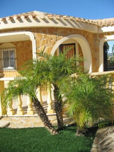 Bienvenidos a nuestro jard n mediterr neo for Tipos de palmeras de exterior