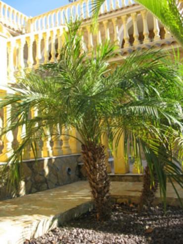 Bienvenidos A Nuestro Jardín Mediterráneo